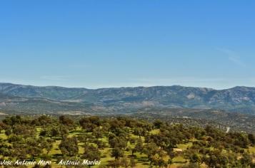 vista de la dehesa desde el castillo de Azuel. Foto cortesía www.rioyeguas.blogspot.com.es